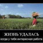 images (5)